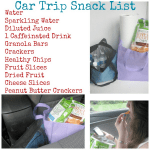 Road Trip Snack Packing
