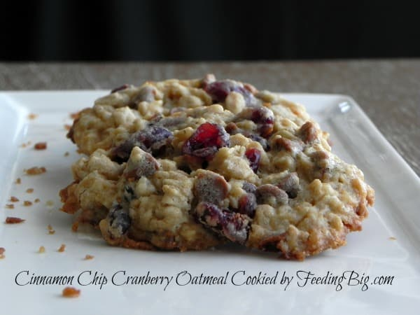 cinnamon-chip-cranberry-oatmeal-cookies-3
