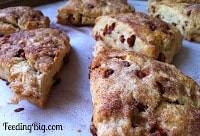 http://feedingbig.com/2013/07/amazing-cinnamon-chip-scones.html