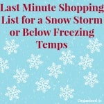 For Your Last Minute Snow or Freeze Shopping List - Organized 31