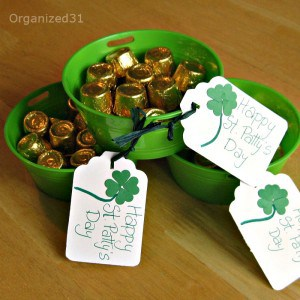 St. Patrick's Day Bucket O'Gold -Organized 31
