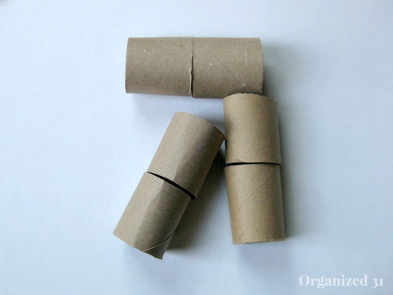 cardboard toilet paper rolls cut in half