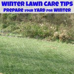 Winter Lawn Care Tips - Organized 31 #sponsored