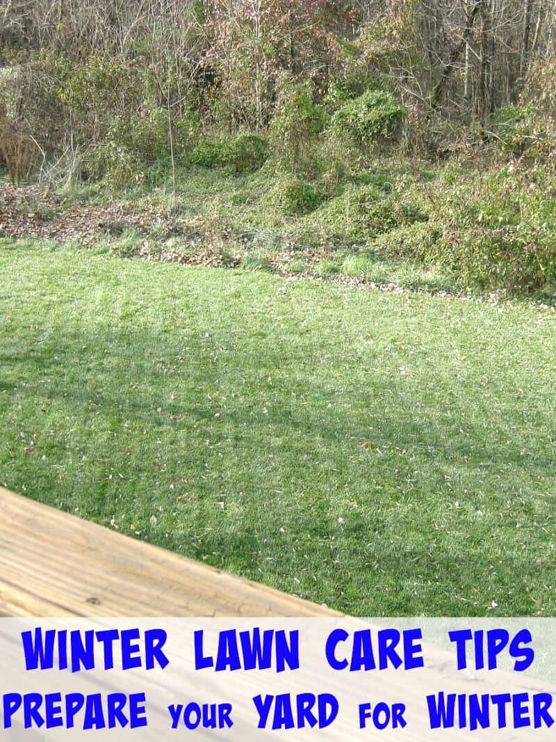 Winter lawn care tips from trugreen organized 31 - Winter lawn care advice ...
