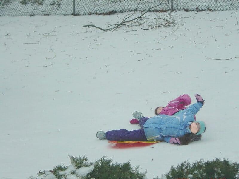Winter Lawn Care Tips - Organized 31  #sponsored