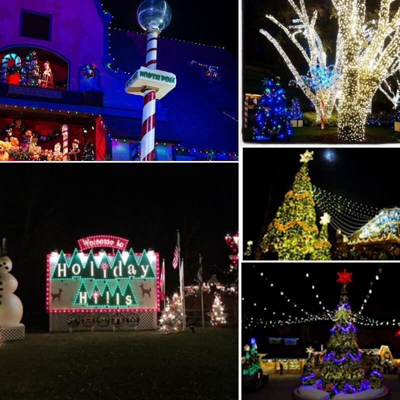 Family Time At Busch Gardens Christmas Town Organized 31