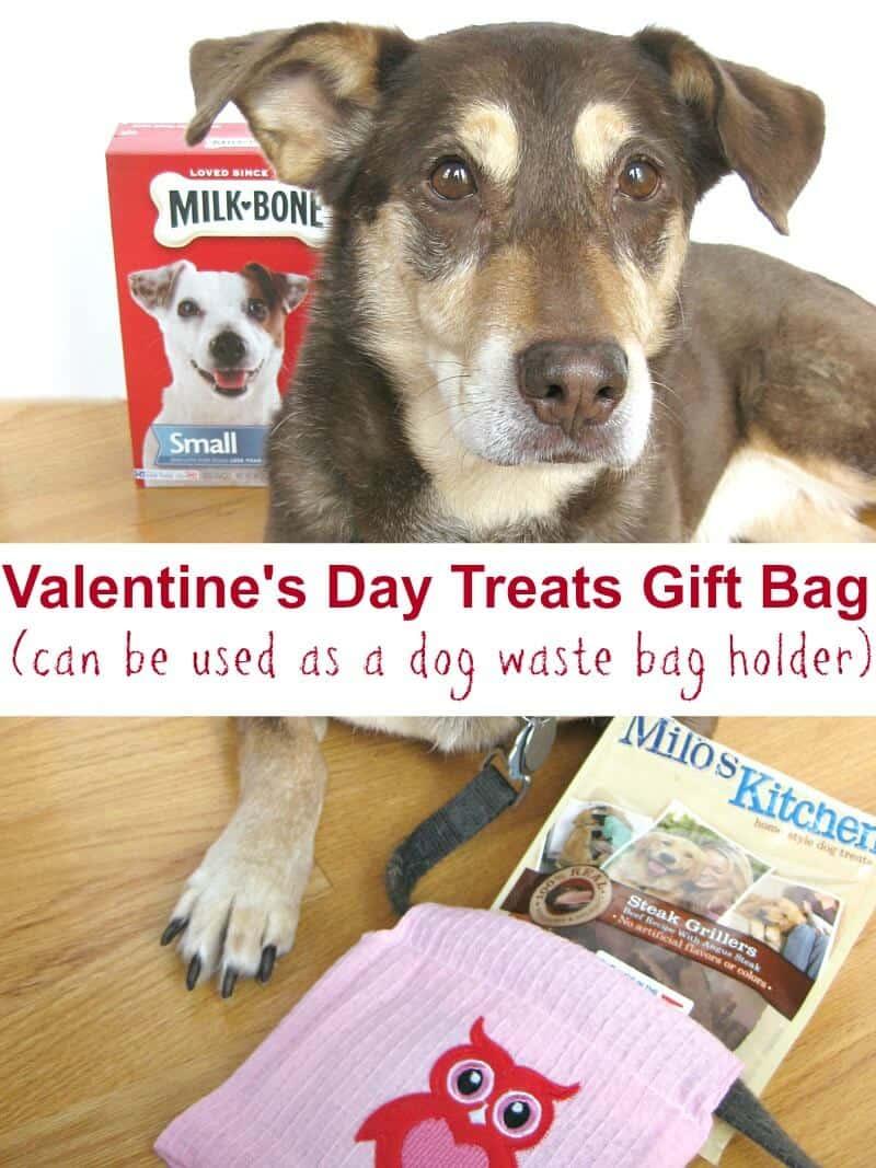 DIY Dog Poop Bag Holder Pattern   Organized 31 #TreatThePups #Ad