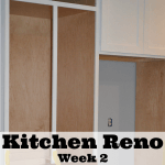 Kitchen Renovation Update – Week 2