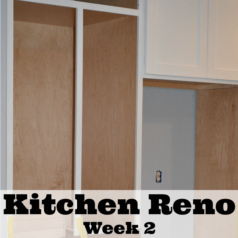 Kitchen Renovation - Week 2 - Organized 31