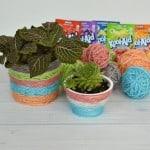 Kool-Aid Dyed Yarn DIY Plant Pot