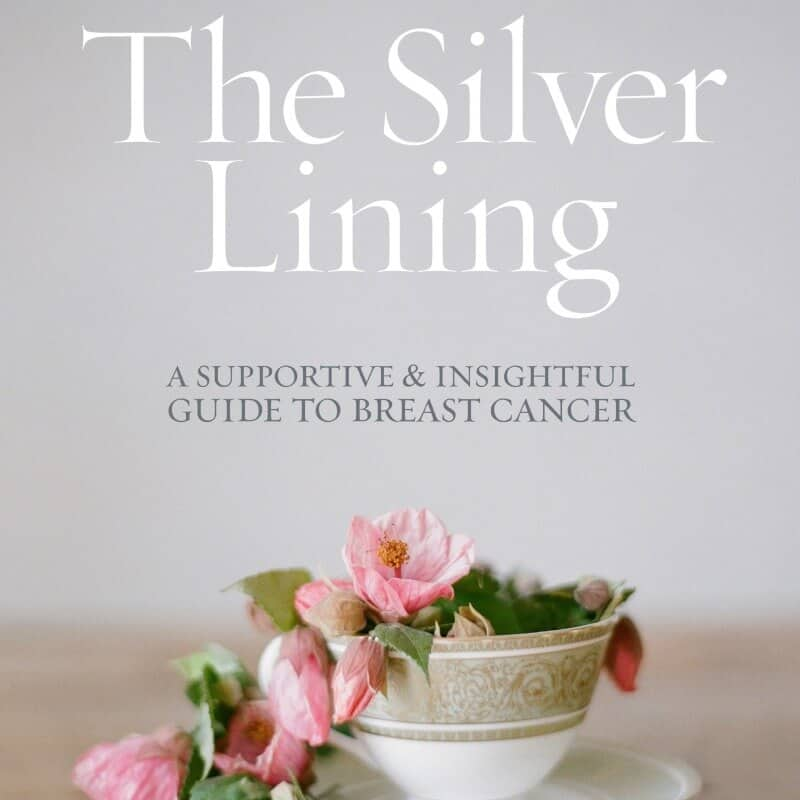 The Silver Lining Companion Guide Cover (English) sq