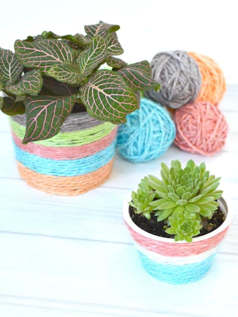 Make DIY Kool-Aid Dyed Yarn and use it to make a DIY Plant Pot . A fun kids' craft and super fun summer craft.