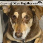 Growing Old(er) Together with Lila