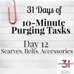 Day 12 Purging Tips – Scarves, Belts & Accessories