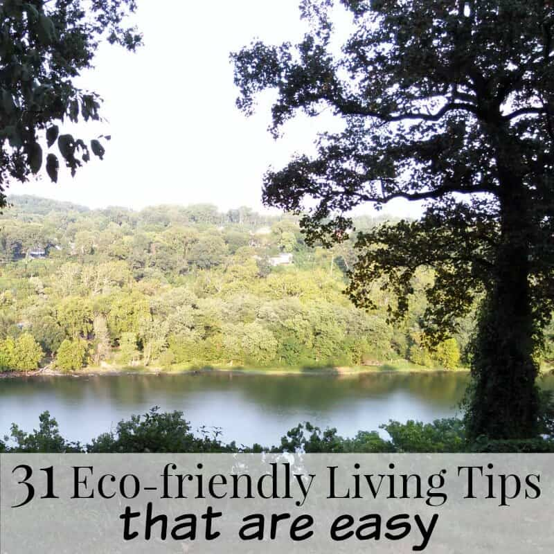 31 Eco-friendly Living Tips that are easy to do and better for the environment. | Organized 31