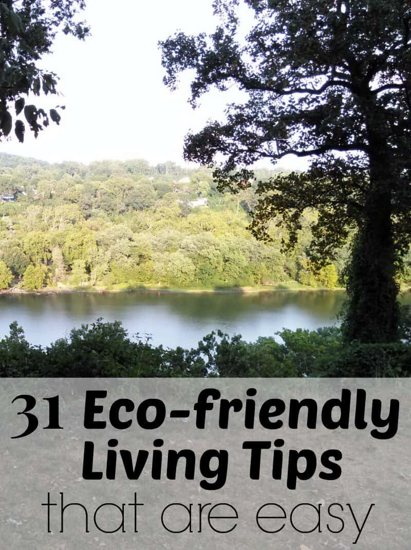 31 Eco-friendly Living Tips that are easy to do and better for the environment and make every day Earth Day. | Organized 31