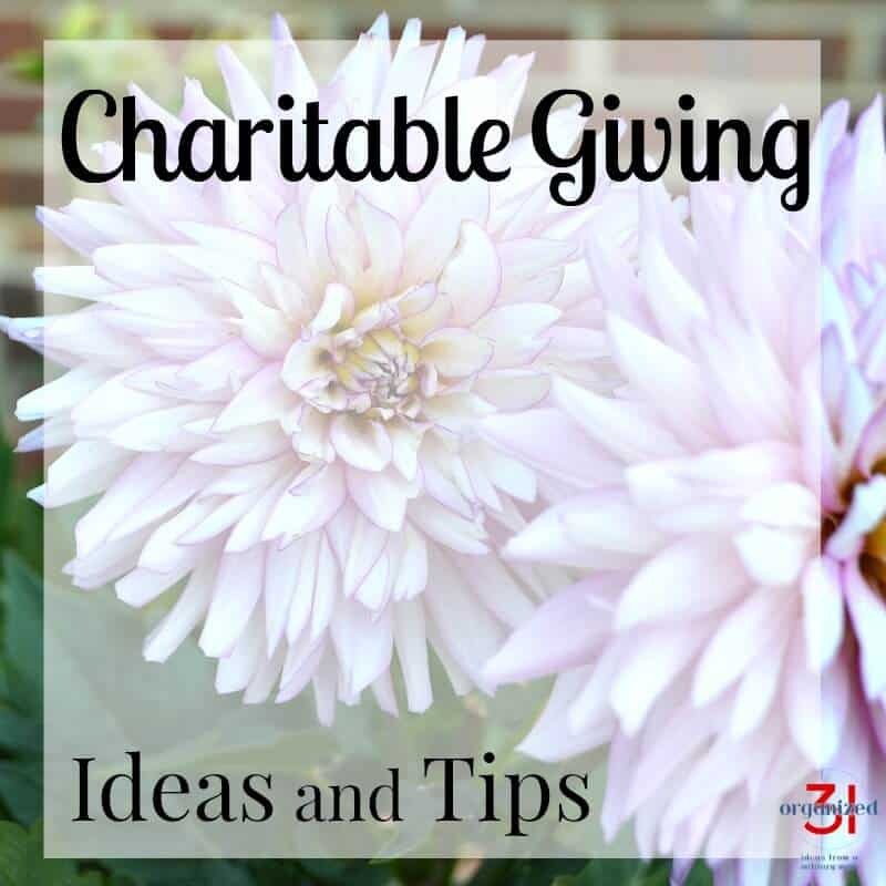 Charitable Giving Tips and Ideas you can do with your family or community group. Giving back to your community is an important trait to practice and teach your children.