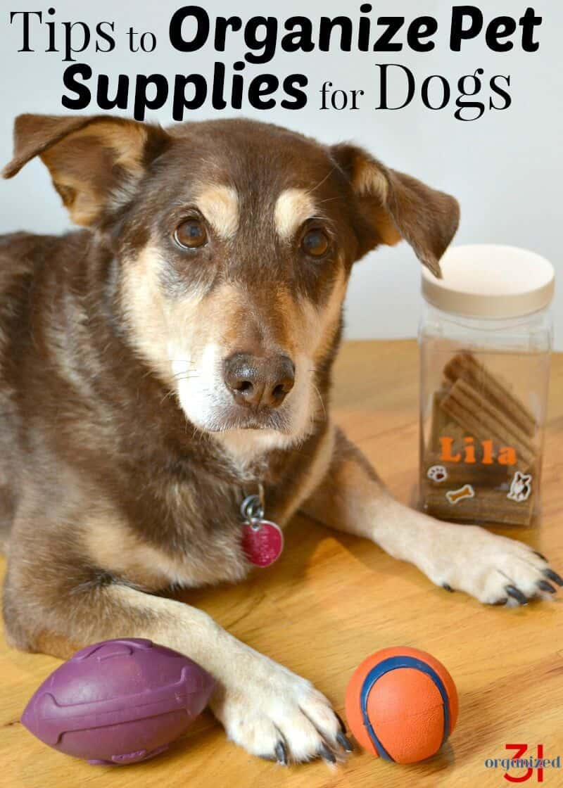 Tips to clean and organize pet supplies for dogs for your pet's wellness. Free printable checklist to keep your dog's food and toys clean and organized. #BestPawForward [ad]