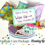 Make a fun and unique college care package idea around a cleaning up theme. #StickItToLint [ad]