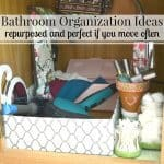Free Bathroom Organization Ideas