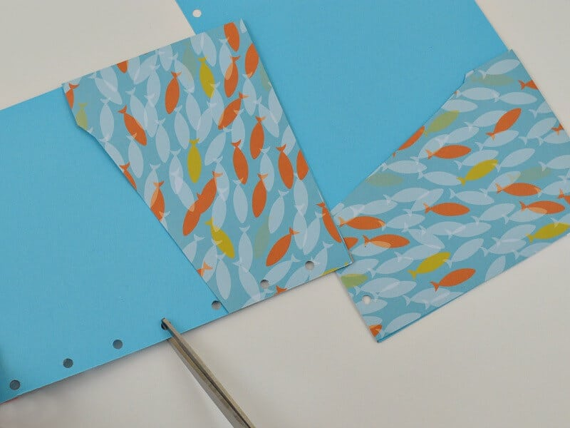 2 pocket folders with fish paper and pair of scissors
