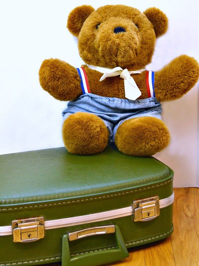 Teddy bear sitting on green suit case