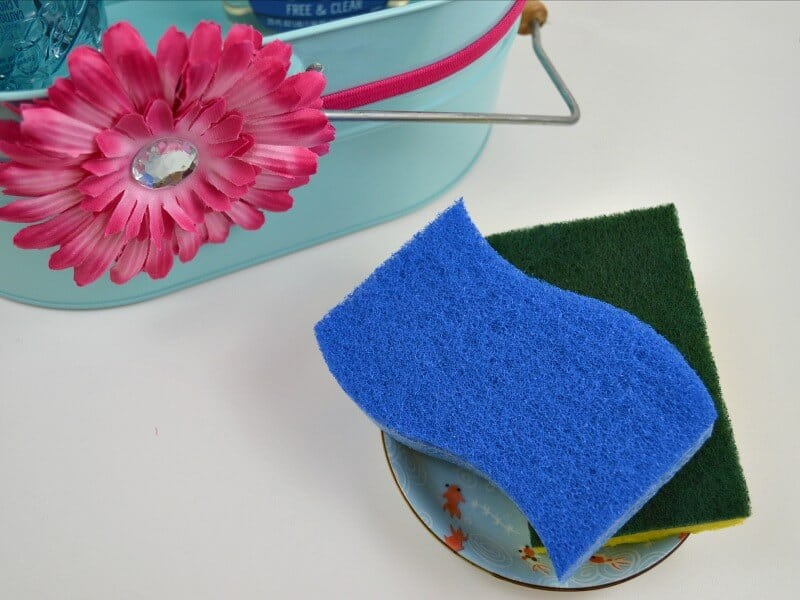 close up of two sponges in dish next to blue caddy with pink flower