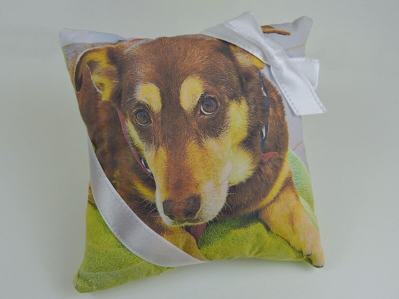 square pillow with picture of a dog