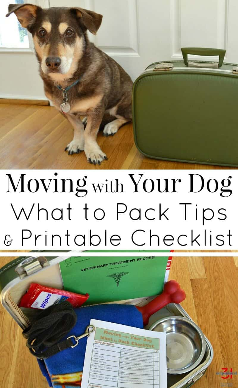 Tips for moving with your dog from my experience in 12 moves with my dogs. Get your what to pack free printable checklist. #RecipesWithPurpose [ad]