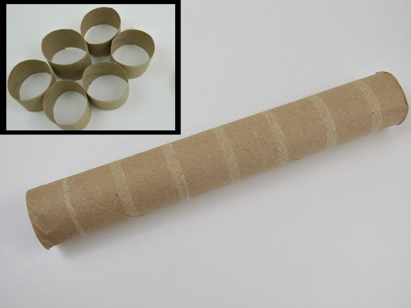 empty paper towel roll with insert image of rings cut from the paper towel roll