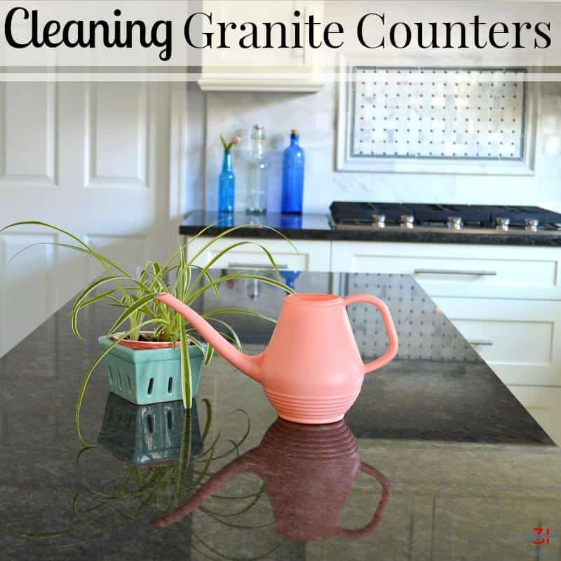 small plant and pink watering can on shiny black granite kitchen counter