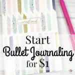 Start Bullet Journaling for $1