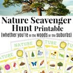 Nature Scavenger Hunt in the Summer