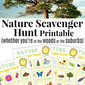 Nature Scavenger Hunt in the Summer