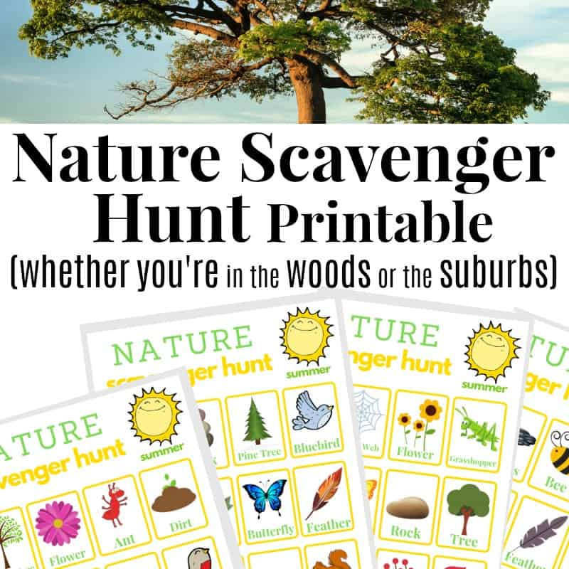 image relating to Printable Nature Scavenger Hunt called Mother nature Scavenger Hunt within just the Summer time - Well prepared 31