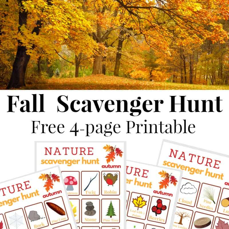 photograph relating to Fall Scavenger Hunt Printable named Drop Scavenger Hunt - Ready 31