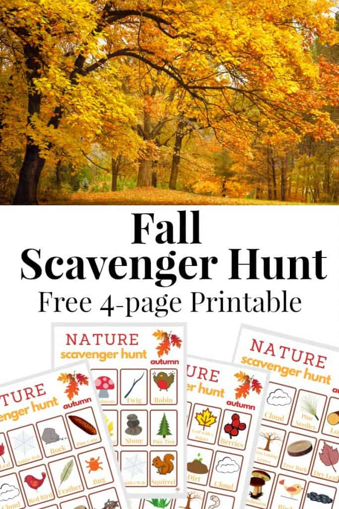 top image - tree with yellow autumn leaves, bottom image - 4 autumn colored scavenger hunt game sheets with title text reading Fall Scavenger Hunt Free 4 page printable