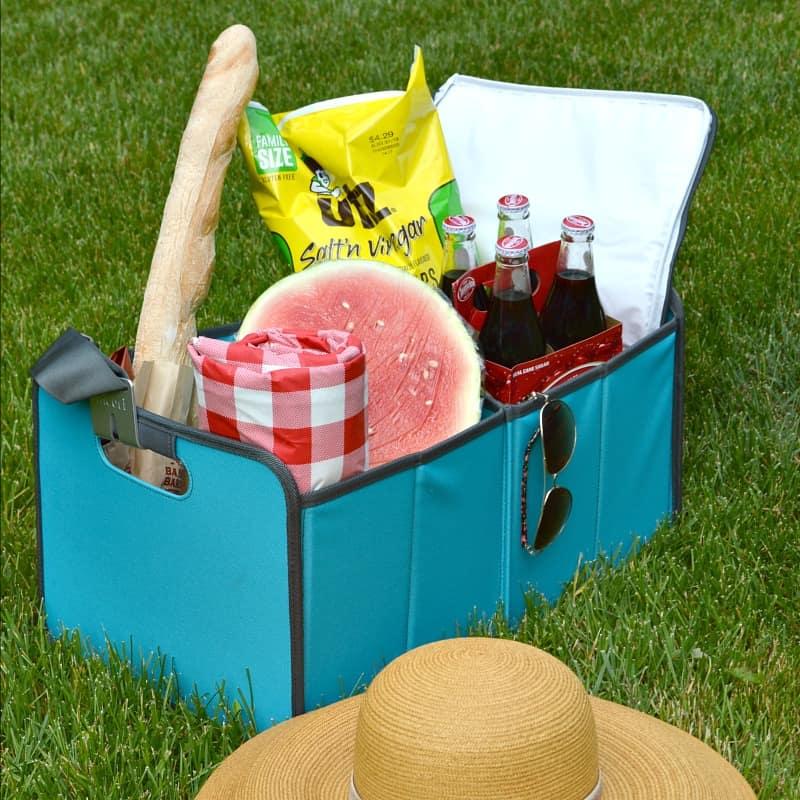 Teal Meori organizing box billed with picnic food