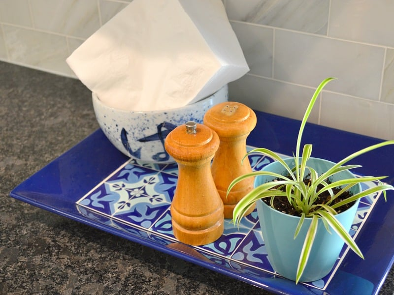Blue tray holding bowl with napkins, salt & pepper shakers and plant on black granite kitchen countertop