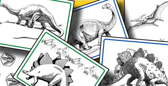 closeup of dinosaur coloring pages