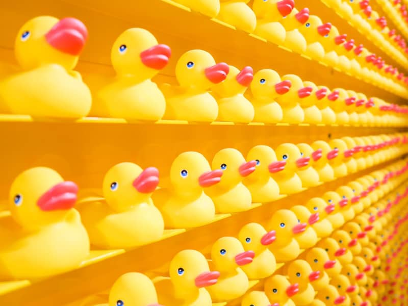 rows of yellow rubber ducks